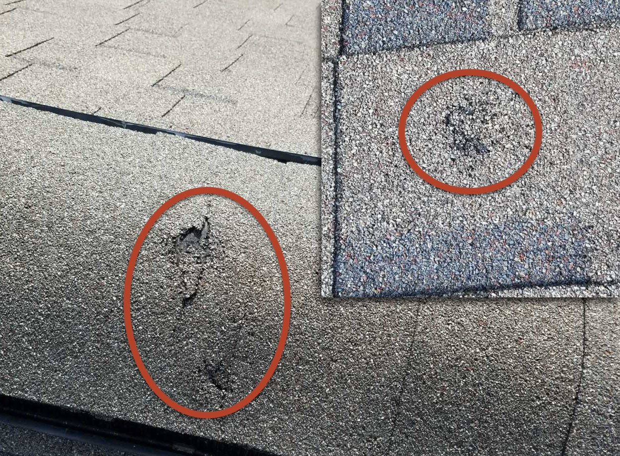 Hail bruises on damaged shingles